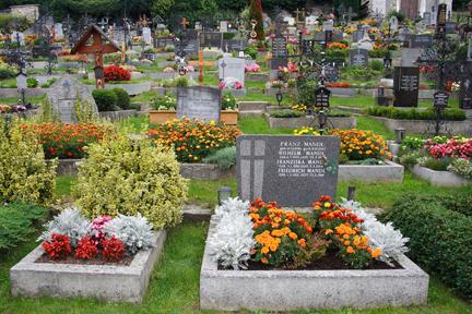 Crowded Graveyard
