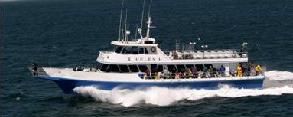 vessel-offshore-1